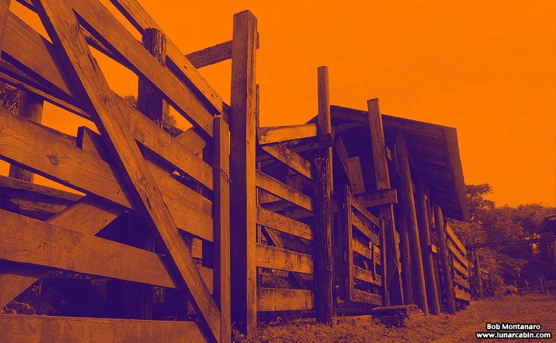 ranch_walk_140226_2