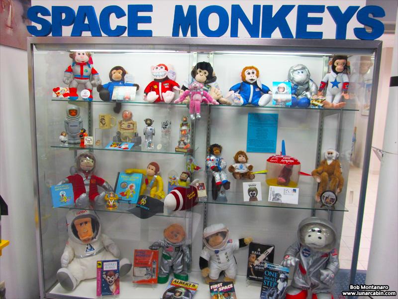 space_monkeys_140610_1