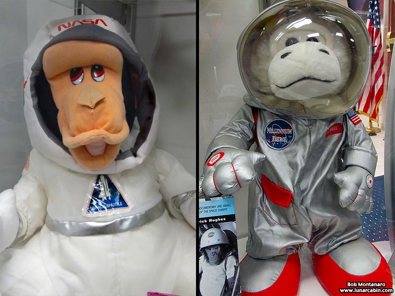 space_monkeys_140610_4