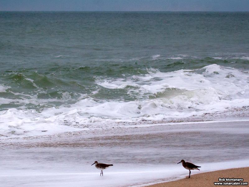 beach_141207_2