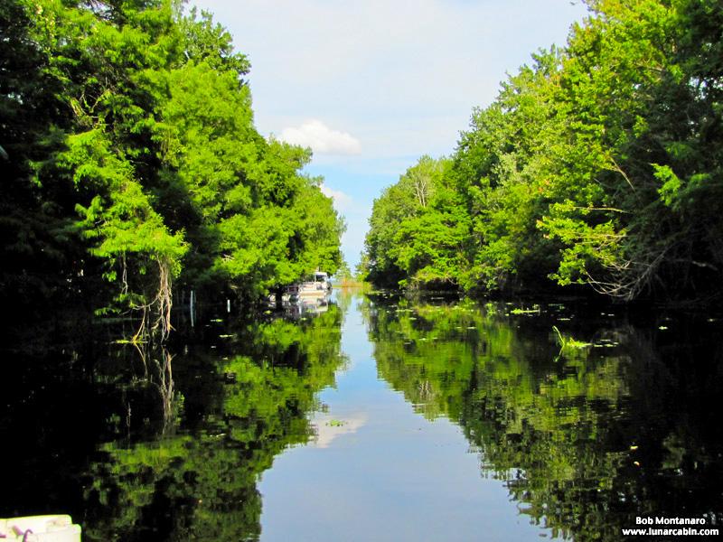 blue_cypress_lake_150419_3