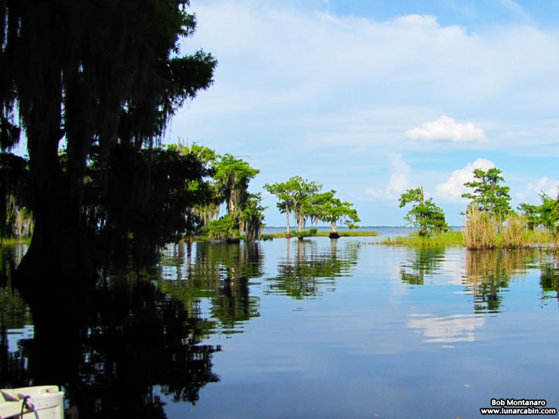 blue_cypress_lake_150419_4