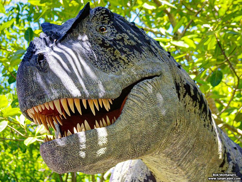 mckee_dinosaurs_160419_14