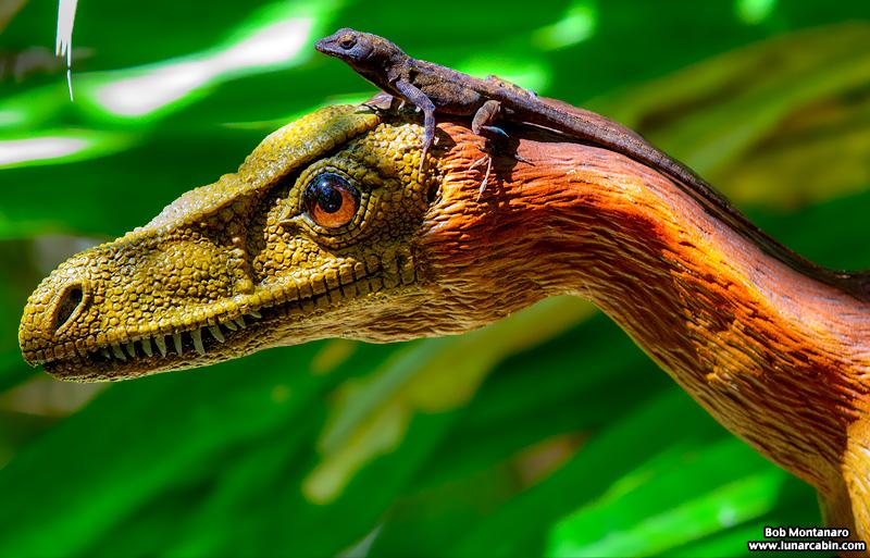 mckee_dinosaurs_160419_35