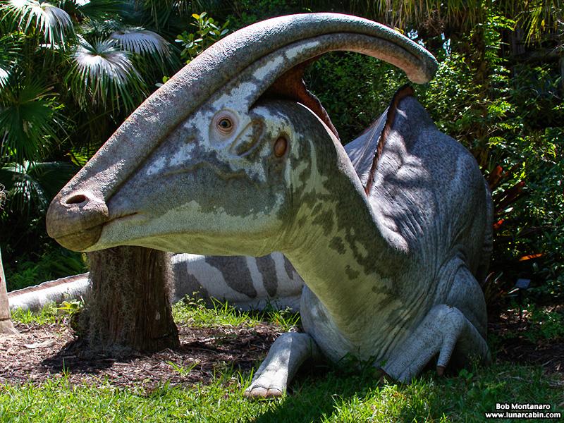 mckee_dinosaurs_160419_4